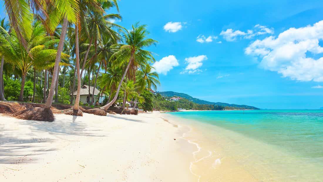جزيرة كوه سامويملاذك السحري لرحلة شهر العسل المثالية - koh samui island