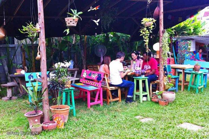 مقهى فري بيرد - شيانغ ماي- Free Bird Café