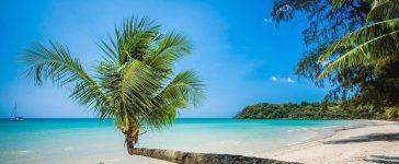 فنادق جزيرة كوه ماك|